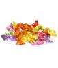 """Bonbon """"d'accueil"""" Mini Fruit 2 kg"""